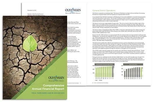 AnnualReports.PortfolioSlide.Oliven