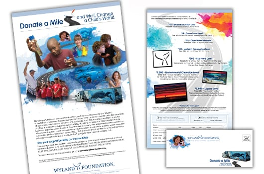 wyland foundation 3