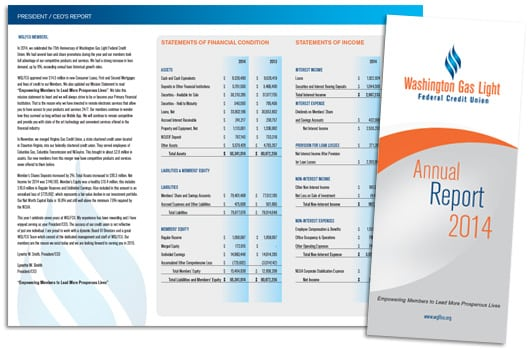 annual reports 8